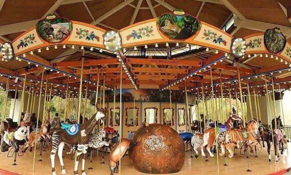 glaza-carousel