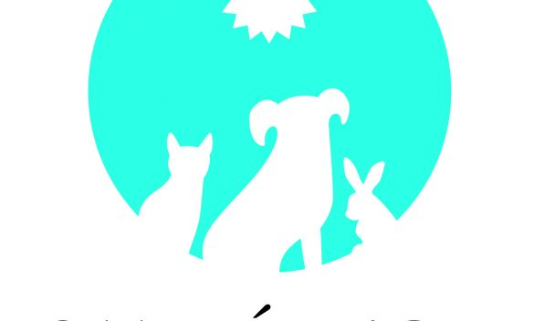 santedor-logo_5in-blue